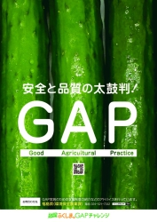 A1_農産物ポスター【きゅうり】