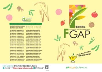 FGAPパンフレット