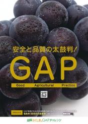 A1_農産物ポスター【ぶどう】