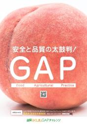 A1_農産物ポスター【もも】