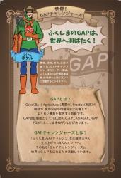 GAPチャレンジャーズの紹介(4枚)