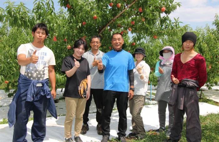 ABE Fruit